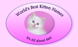 World's Best Kitten Names