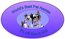 World's Best Pet Names