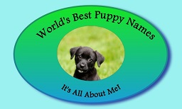 World's Best Puppy Names