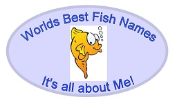 World's Best Fish Names