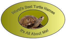 World's Best Turtle Names